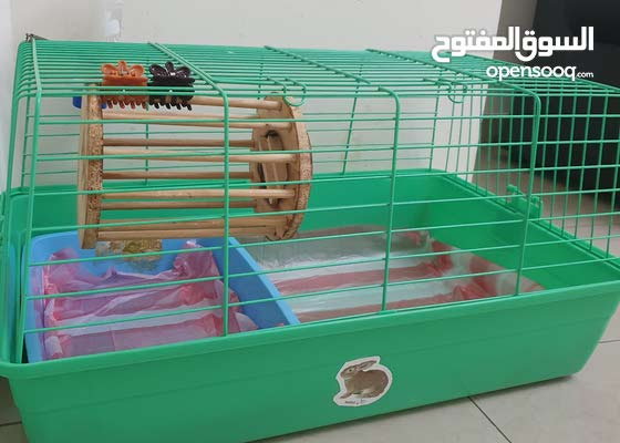 rabbit cage + 4 more accessories for sale