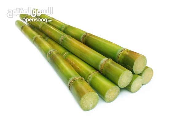 بيع قصب السكر(sugarcane)