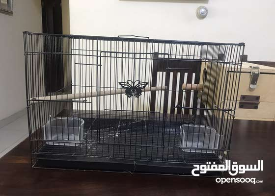 Breeding cage for lovebirds or budgies