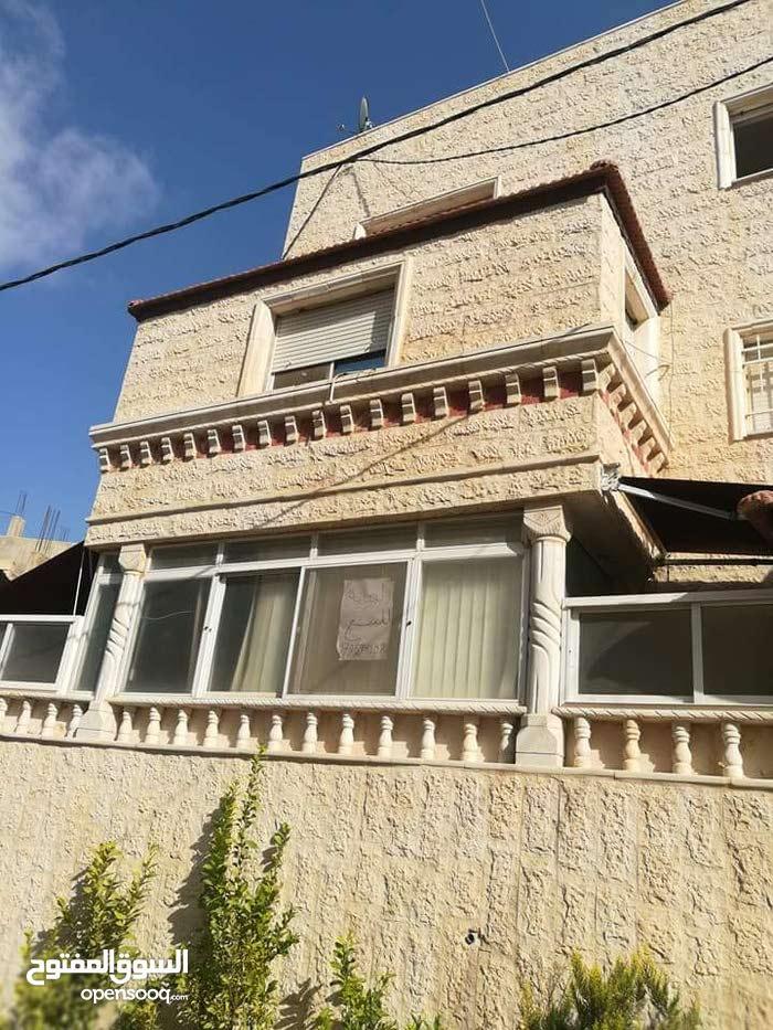 اربد بيت راس التطوير الحضري حي الاداعه فوق مدرسه البنات