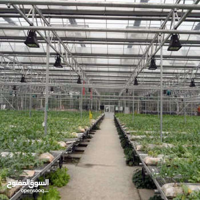 تسويق البيوت المحمية و معدات زراعة المائية