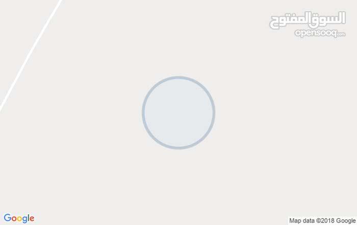 ارض 115دنم الدنم