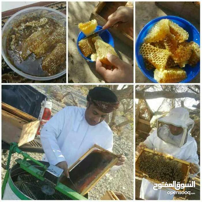 بيع عسل السدر الباكستاني وعسل الدبس الايراني