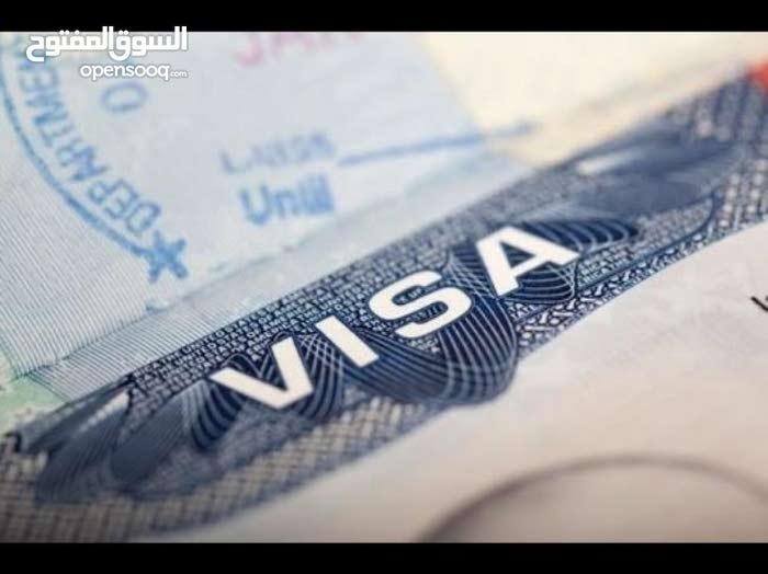 التاشيرة المصرية الرقمية خلال اسبوع عمل