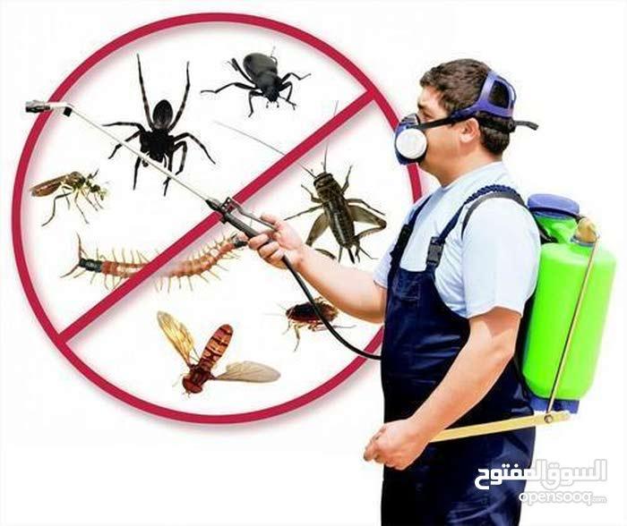 pest control services  best