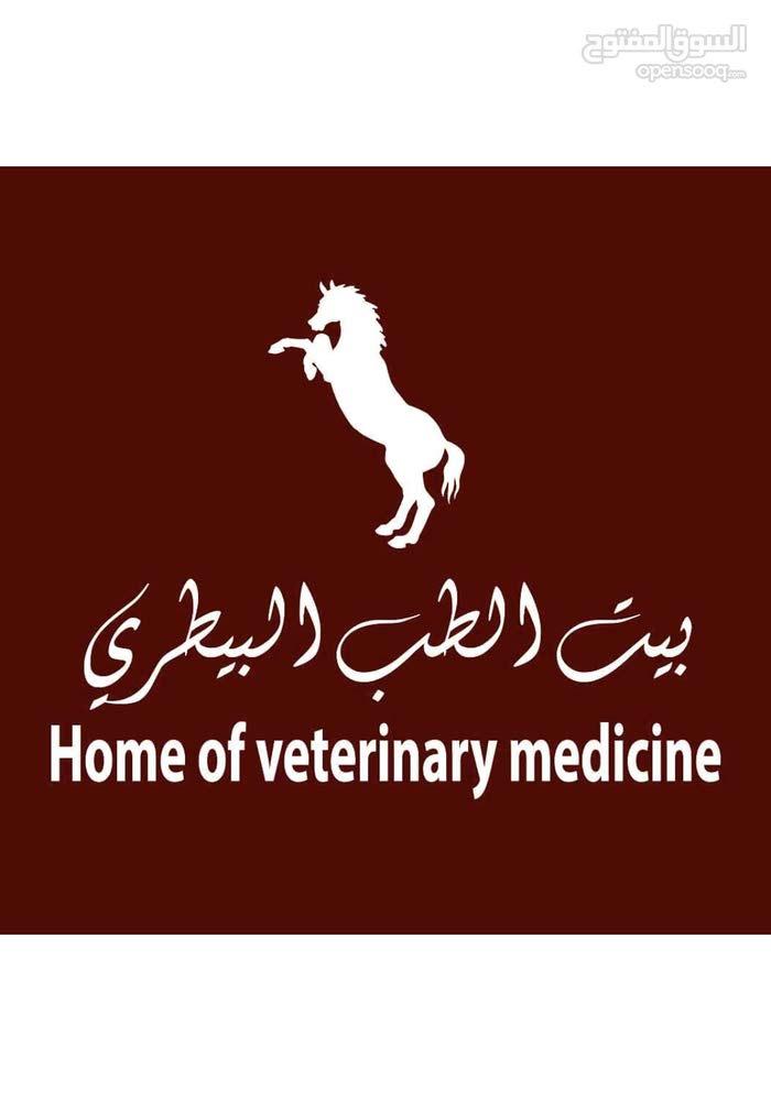 مطلوب طبيب بيطري looking for a veterinarian
