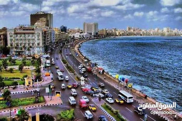 اخر شارع الورشه من شارع الجمعيه الهانوفيل العجمى