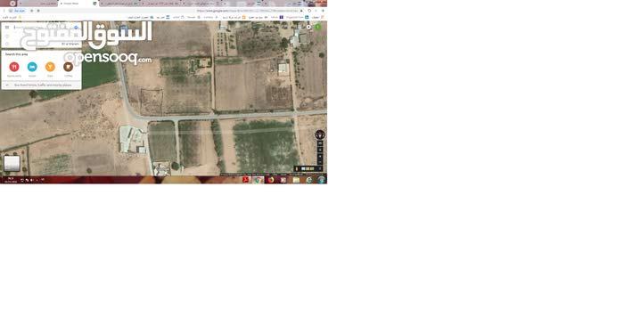 قطعة ارض 2000 متر للبيع ببئر حسن