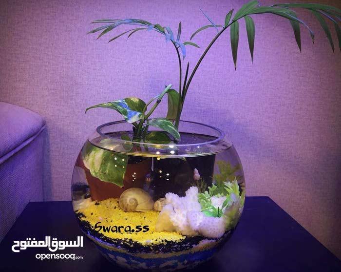 احواض اسماك الزينه باشكال مختلفه وبأسعار مناسبة وحسب الطلب