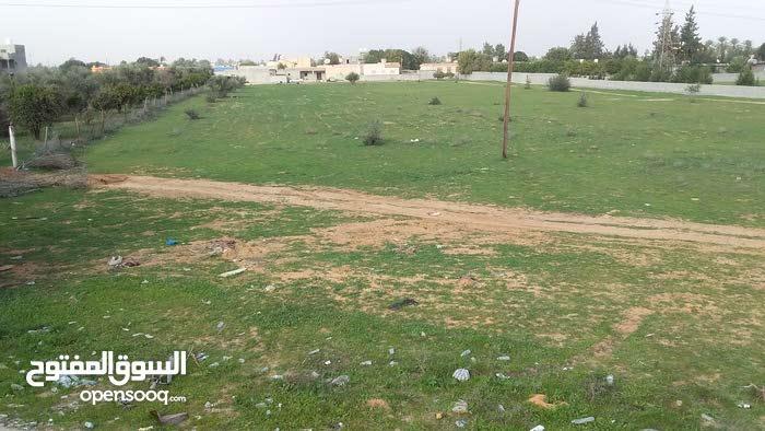 قطعة ارض للبيع بلقرب من كوبري المطار قصر بن غشير  ارض      فاضيه