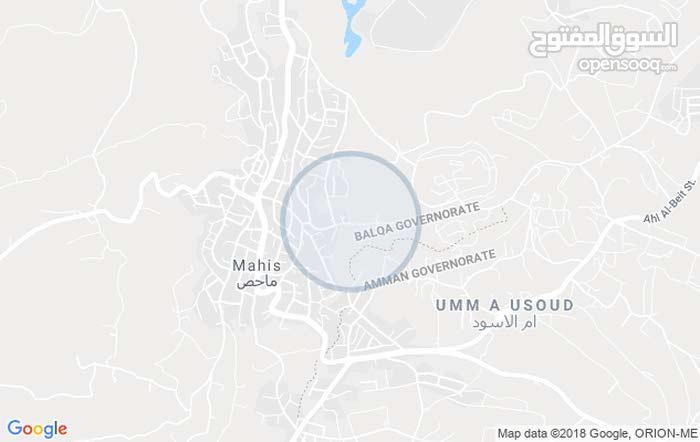 800م ماحص / الميدان الجنوبي