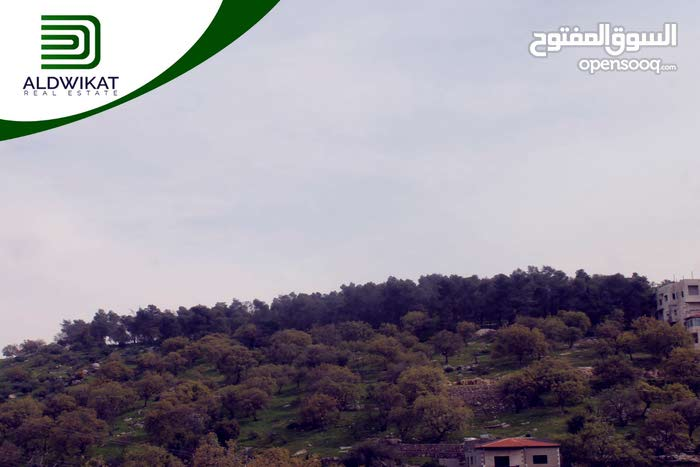 ارض مميزة للبيع في بدر الجديدة عراق الامير بمساحة 8 دونم