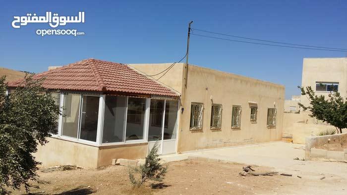 عمان شفابدران ام العروق