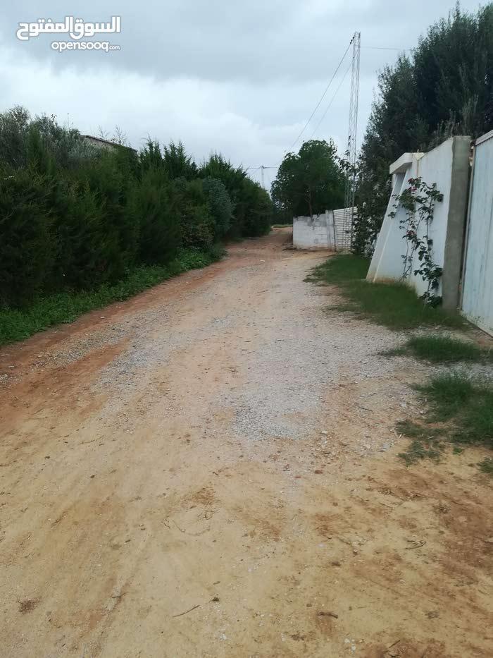 أرض 283م للبيع طريق سيدي حامد