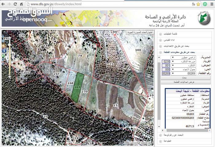 الارض للبيع في عجلون منطقة شكارة