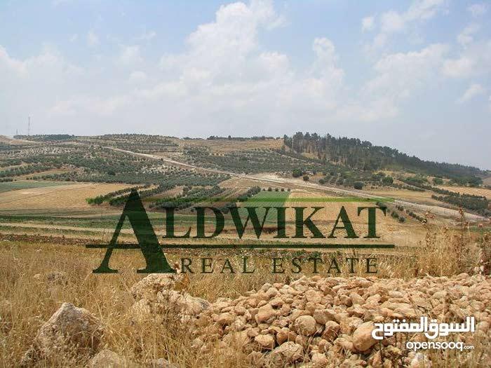 ارض للبيع بالقرب من دابوق منطقة (ابو ركبة) , مساحة الارض 2029م
