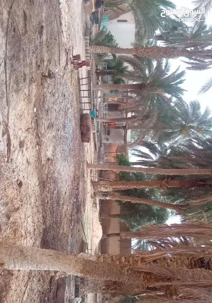 وسط مدينة ورقلة بسوق الحجر حي باحمد