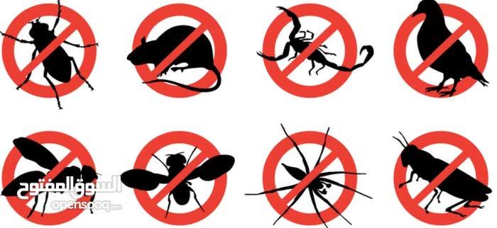مكافحة الحشرات والقوارض داخلى خارجى