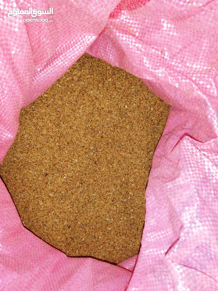 بذر قت عماني مضمون 100%