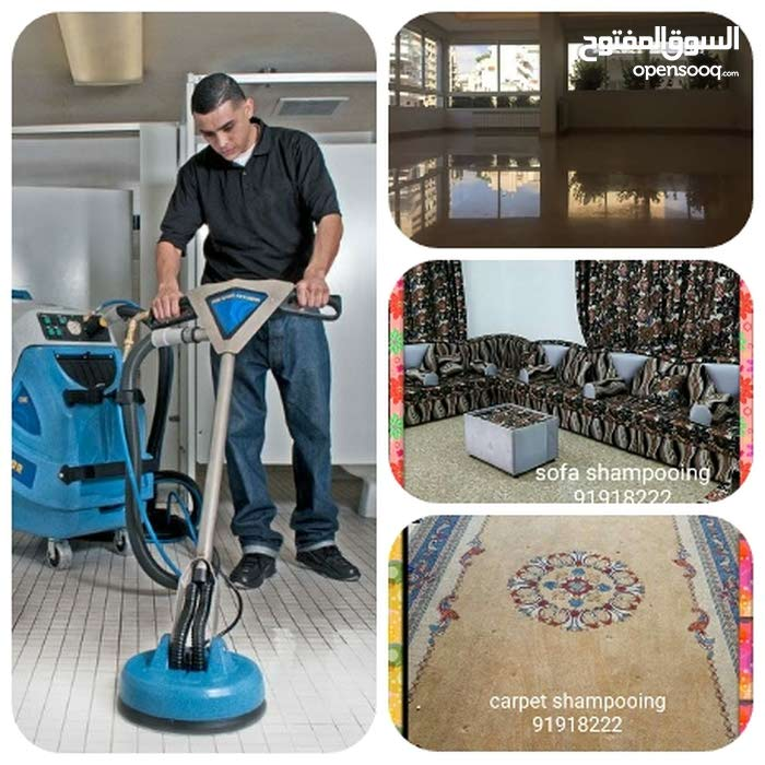 General cleaning house+flats&pest control house+flats services