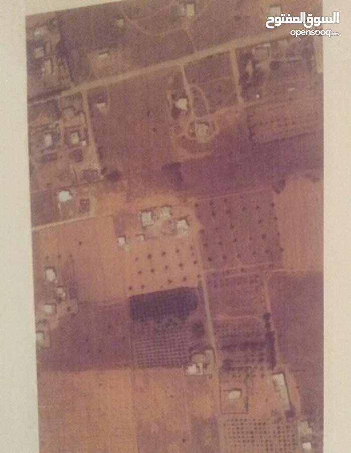 منطقة سوق السبت قبل مستشفى السبيعة اليمين بحوالي 1000 متر بقليل