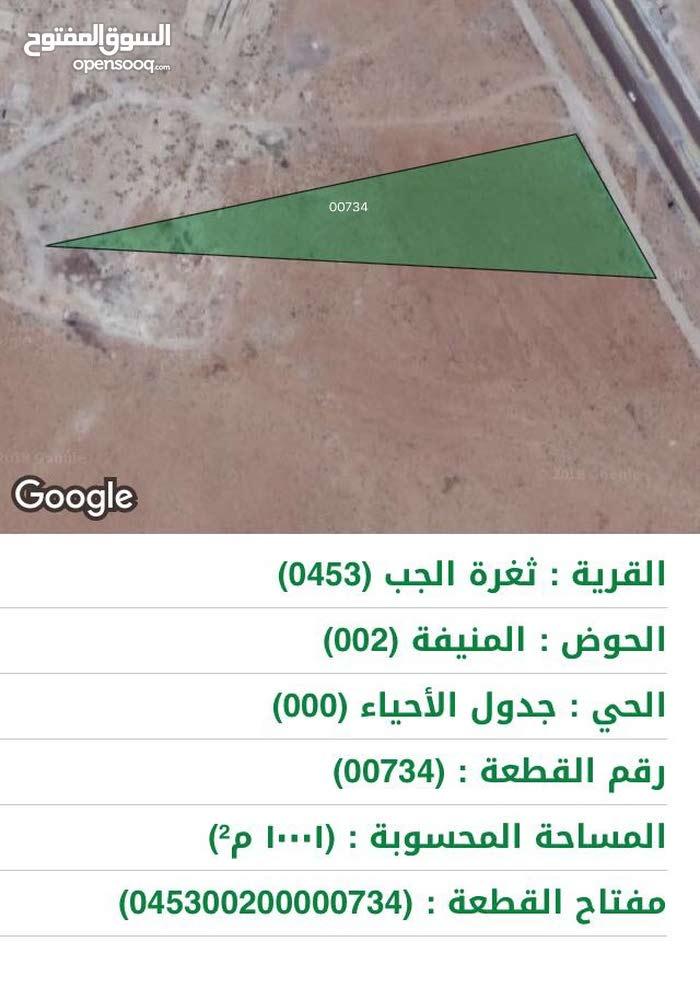 قطعة ارض للبيع واجهة 80 متر على الاتوستراد مساحة 10 دنمات