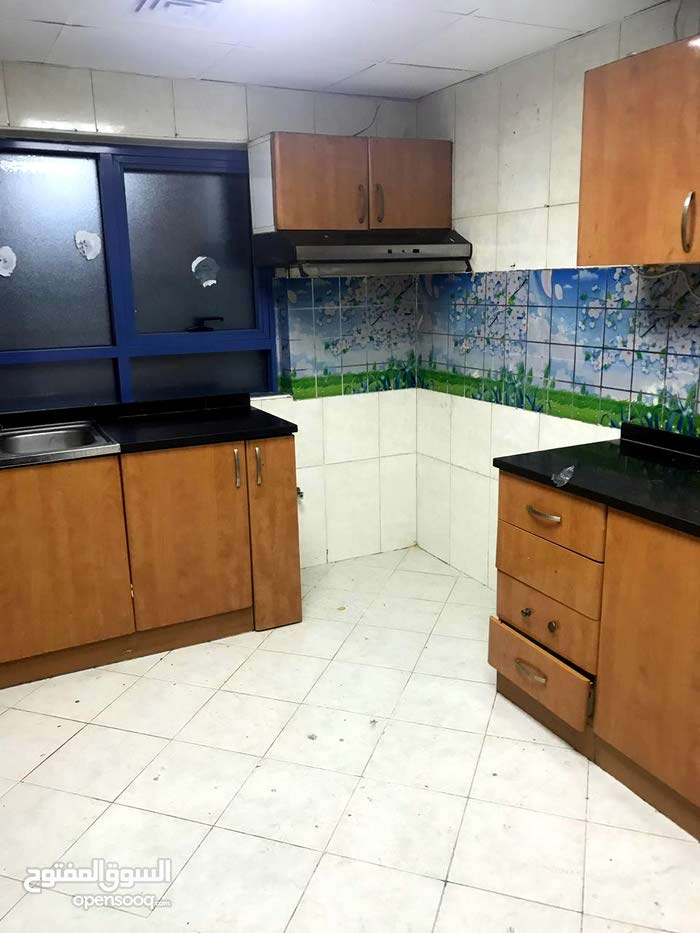 apartment in 1813 is available for rent