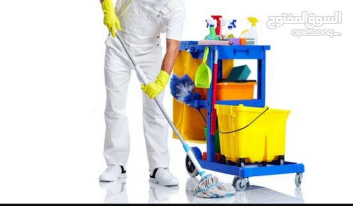 تنظيفات عامه وعاميقه