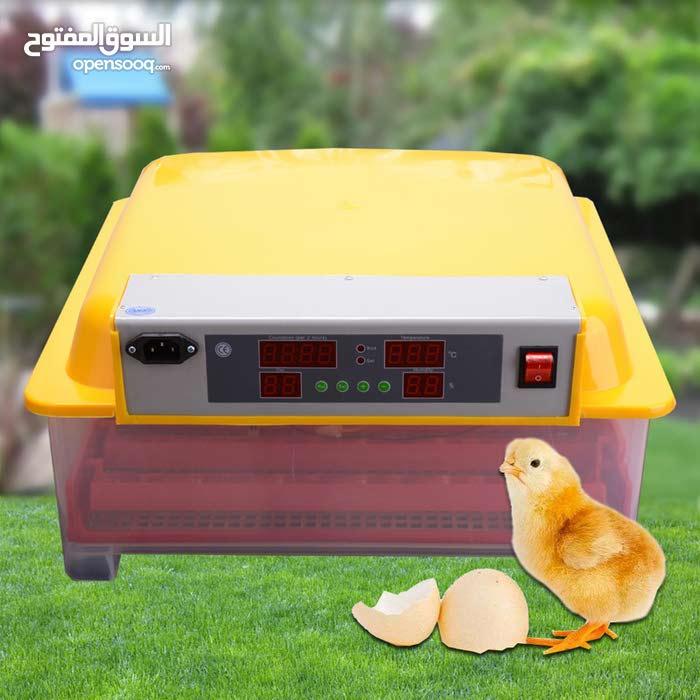 حضانة تحمل 36 بيضة دجاج و 144 بيضة سمان ذات جودة عالية وممتازة