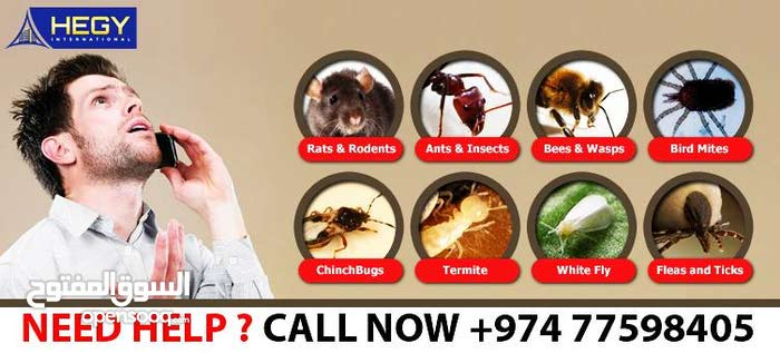 PEST CONTROLL SERVICES