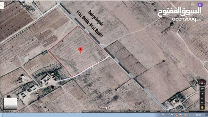 ارض فلاحية 3 هكتارات -  أولاد إبراهيم