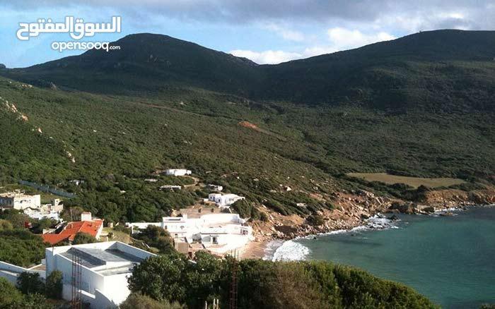 ارض ساحلية 5000م للبيع  بمنطقة كاب نيقرو ولاية باجة