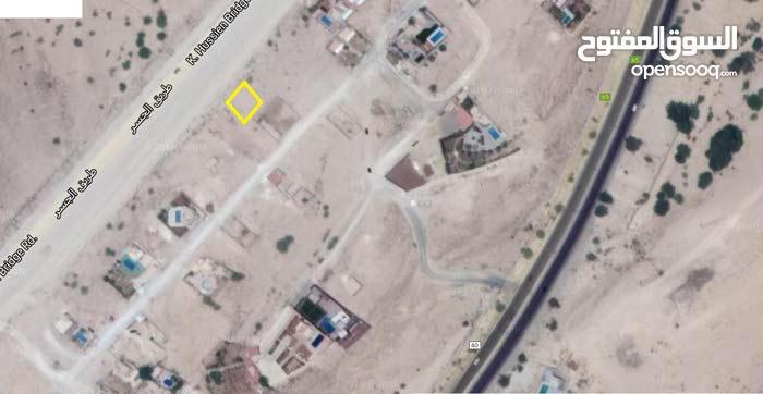 ارض للبيع - شاليهات - البحر الميت - الروضه - منسف ابوزيد الغور