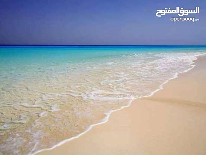 مرسي مطروح علي البحر مباشرة