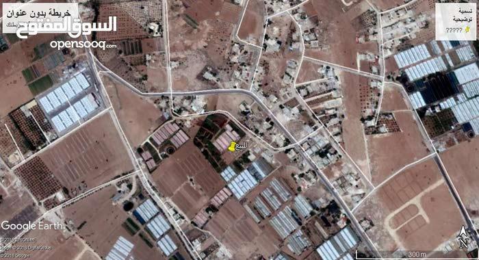 نصف دونم في قرية ابونصير