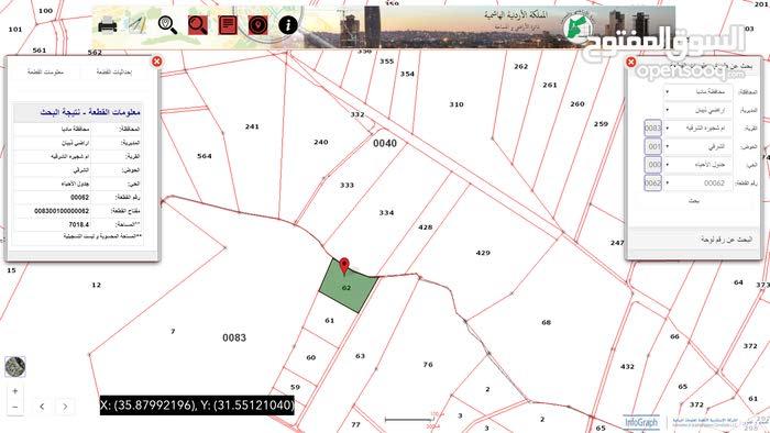 ارض زراعية للبيع - مادبا – اراضي ذيبان – ام شجيرة الشرقية – المساحة 7 دونم – حوض 1 الشرقي