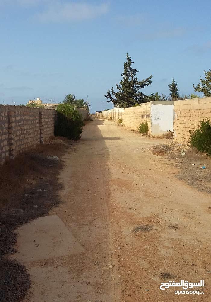 قطعة ارض بها ستراحة مساحتها ء2600م للبيع باتاجوراء قريبة من ساحلي  مسيجة بالكامل