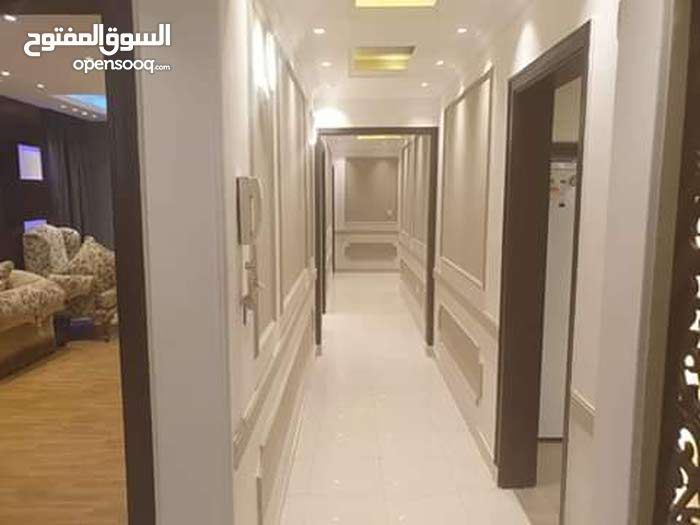 for rent in Cairo Fifth Settlement apartment