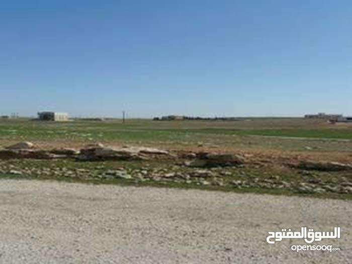 قطعة ارض للبيع على طريق المطار خلف جامعة الاسراء في اجمل المناطق على تله اللبن