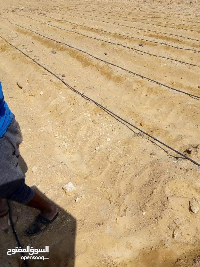 أرض زراعيه مسجله كامله المرافق والخدمات بها مياه شرب وري نيلي وكهرباء نصف ساعة م