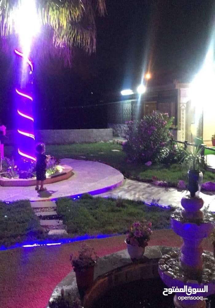 عمان شفابدران