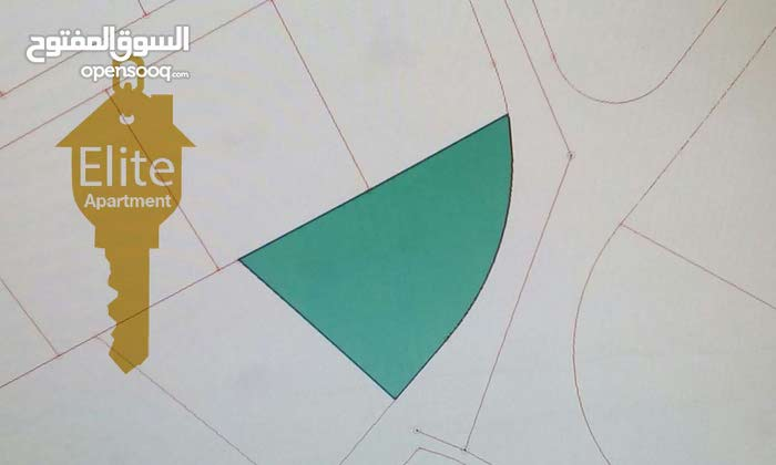 قطعة ارض زراعيه للبيع في الاردن - عمان - ام البساتين مساحة 2313 م