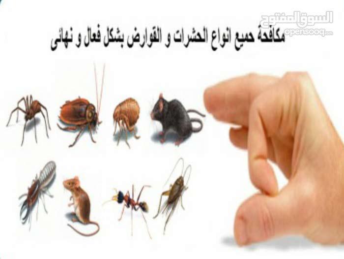 تنظيف واباده حشرات