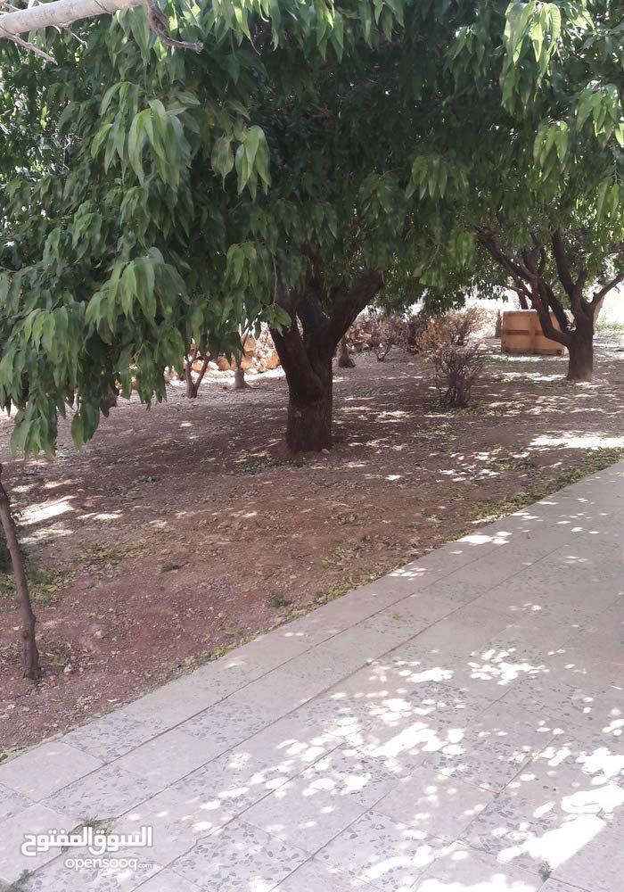 شقة مفروشة  تصلح سكن طالبات طريق المطار