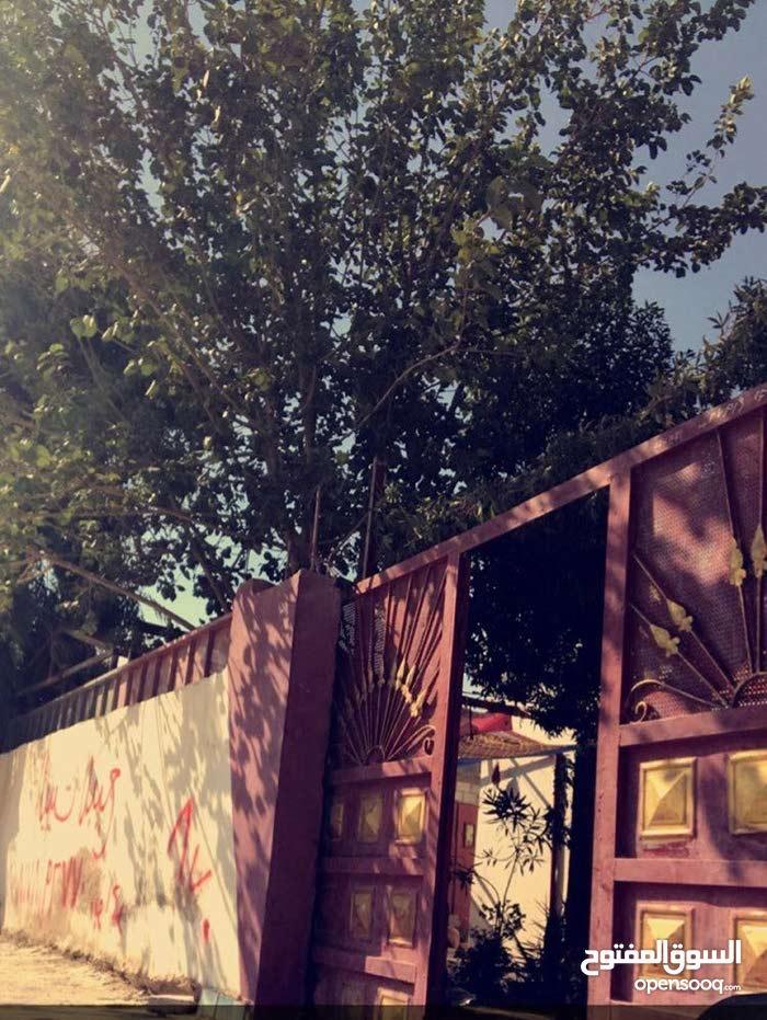 بيت للبيع في المفرق حي الحسين الحوض الحي الشمالي الغربي 21 رقم القطعه 661