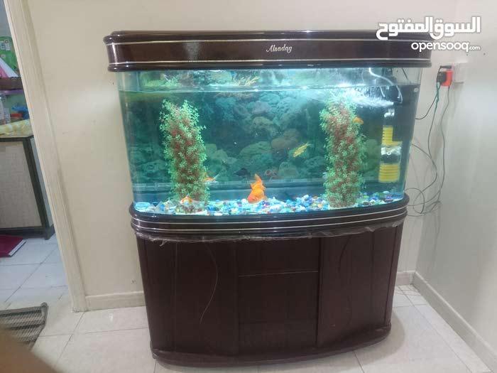 Fish Aquarium in good condition for sale