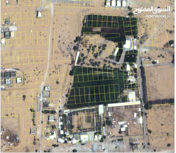 لجميع الجنسيات تملك اراضي سكنية مقابل طريق الزبير بسعر (289) الف درهم بعرض اقساط علي (12) شهر