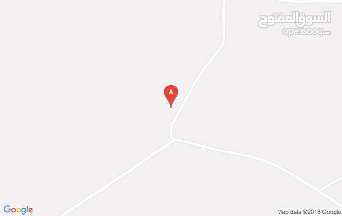 ارض زراعية  4 دونمات مغروزة في منطقة غرب ذيبان