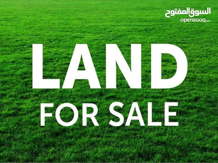 قطع اراضي مميزة للبيع في ام زوتينة للاسكان