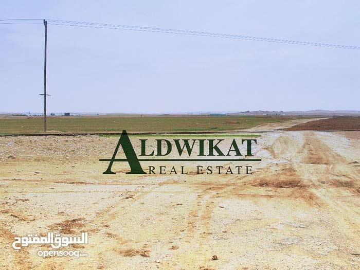 اراضي للبيع في المفرق , مساحة كامل الارض 700 دونم